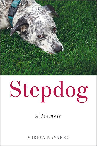 Stepdog book cover