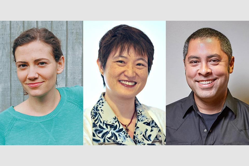 Brooke Jarvis, Ann Lin, Jason De León